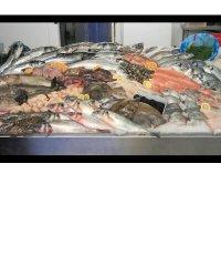 Aglaia Seafoods