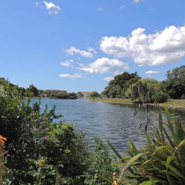 Mewsbrook Park
