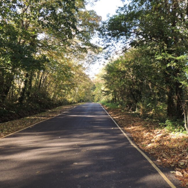Littlehampton Walks