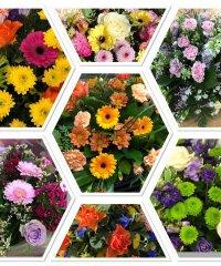 Flowers of Rustington