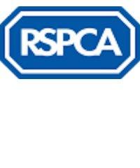 RSPCA Littlehampton Shop