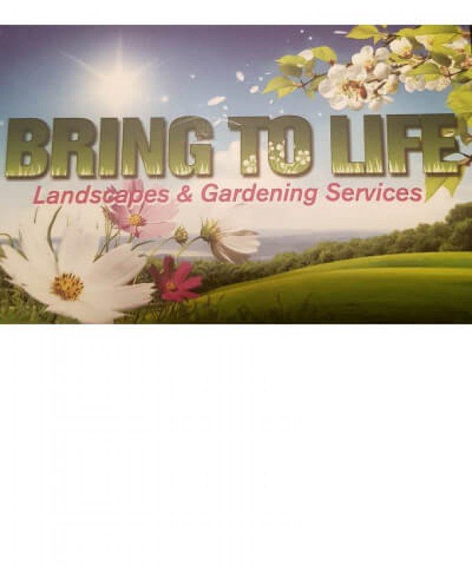 Bring To Life Landscapes