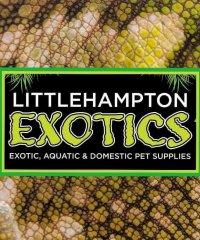 Littlehampton Exotics