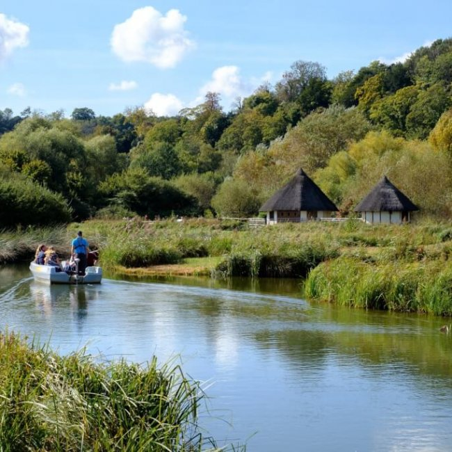 Wildfowl and Wetlands Centre